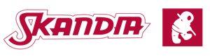 Логотип бренда Skandia