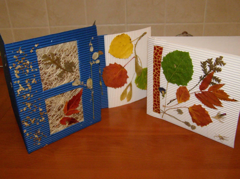 Открытка своими руками из природных материалов - листьев 817