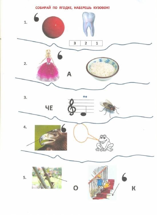 Зашифрованные картинки в природе
