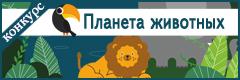 """II Всероссийский творческий конкурс """"Планета животных"""""""
