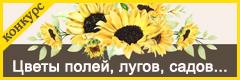 """Всероссийский творческий конкурс """"Цветы полей, лугов, садов..."""""""
