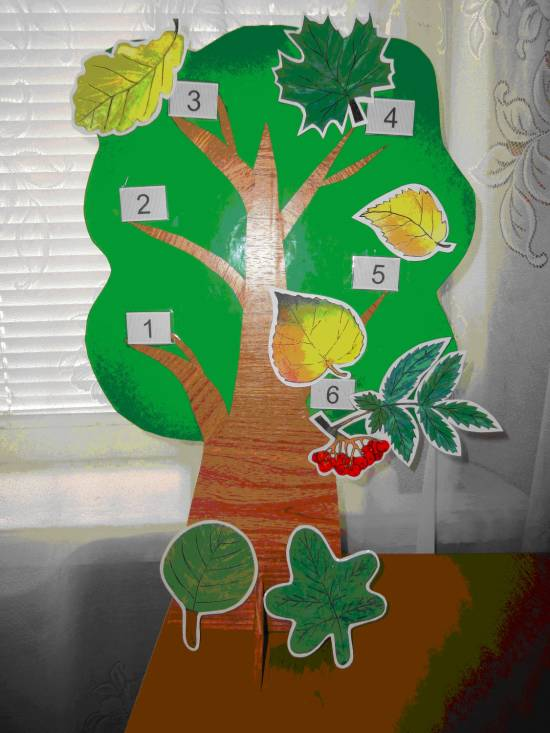 2 гр мл. с знакомство деревьями