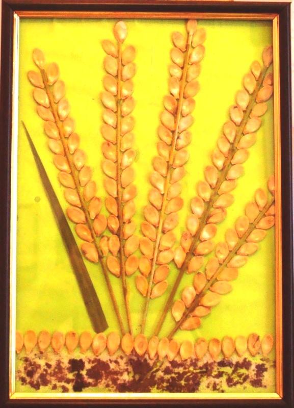 Поделка колосок пшеницы для детей 76